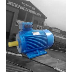 WEM Low Voltage High Efficiency Motors