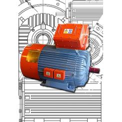 Remanufactured Electric Motors
